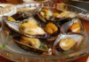 Frozen Half-shell Mussel