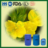 Cold Pressed Evening Primrose Oil 9% GLA