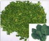 Organic Dehydrated Spinach Flakes