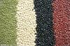 Chinese Origin Red Beans