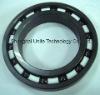 6900 Full Ceramic bearing (Si3N4)
