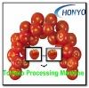 tomato processing machine