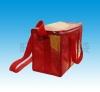 2010 conveninent cooling bag