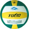 Professional Volleyball