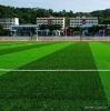 artificial football turf