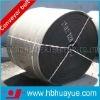 Nylon Endless conveyor belt