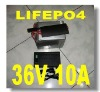 LiFepo4 Battery Pack 36v 10AH for electric bikes
