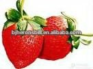 100% Natural Strawberry Powder