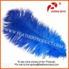 Ostrich plumes for sale