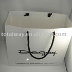newly fashion shopping paper bag