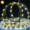 12V 5050 SMD LED Flexible Strip Light