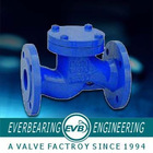 supply for low price DIN standard check valve