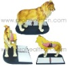 Anatomical model-Dog Anatomical