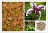 Natrue Horny Goat Weed Extract Icariin Epimedium P.E.