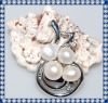 Beautiful New Baroque Pearl Brooches BR258