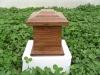paulownia wooden urn,urns