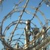 Hot Galvanized Razor Barbed Wire