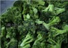 IQF broccoli spears