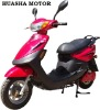 600w electirc scooter ( HS815)