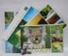 Postcard & Greeting Card Printing
