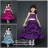 2012 New Arrival Hot Sale Flower Girl Dress SPTFGD1