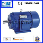 Ltp Y Series motor electric 100kw ac