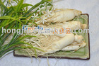 Ginseng Soft Extract for Health Food