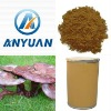 concentrate powder 100% Naturnal Ganoderma Extract powder