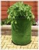 PE potato planters