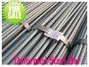 Hot Rolled Deformed Steel Bar