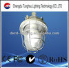 High Quality Induction Explosion-proof Lamp