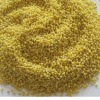 chinese yellow millet in husk for sale