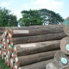 Round Burma teak logs