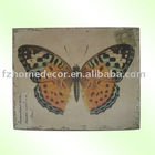 Canvas Printing picture frames with butterfly picture