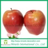 fake foam apple for decoration MH05522