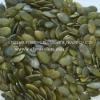 Pumpkin Seeds kernels