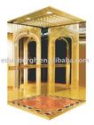 Luxury Passenger Elevator(EC-12)