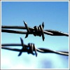 Hot Dipped Galvanized barbed wire(factory)
