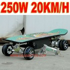 Remote Control 250W Electric Skateboard