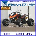 Sell good quality 250CC EEC ATV