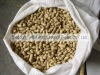 blanched peanuts kernel in shell