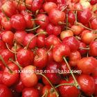 2012 Chinese cherry