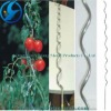 HOT ** tomato sprial support ( galvanized spring/sprial wire )