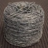 Competitive Price Electro Barbed Wire