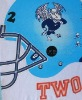 exquisite brochure printing
