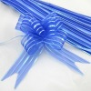 Royal Organza Pull Bow