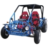250CC Popular Go Kart with EEC