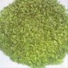 high quality organic shallot/Chive