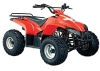 XY110ST-6 Kids ATV
