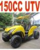 CE 150CC UTV(MC-422)